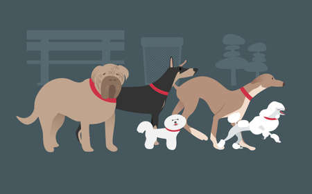 acts: the dogs in deferent breeds and acts