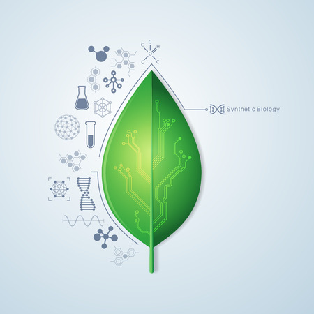 graphic of single leaf with electronic pattern
