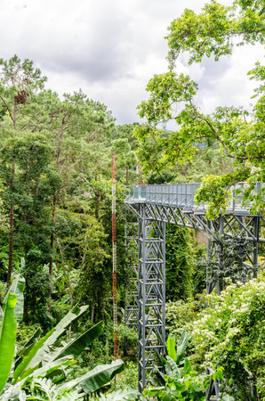 Canopy Walkway, Queen Sirikit Botanic Garden, Chiang Mai, Thailand Stock  Photo   91867245