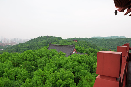Landscape view of a park 免版税图像
