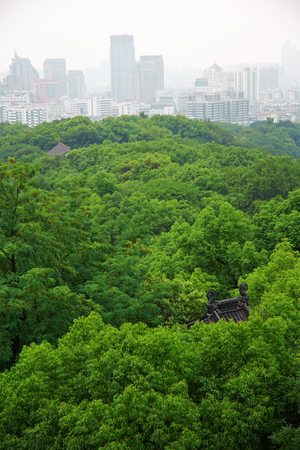 Landscape view of a public garden 免版税图像