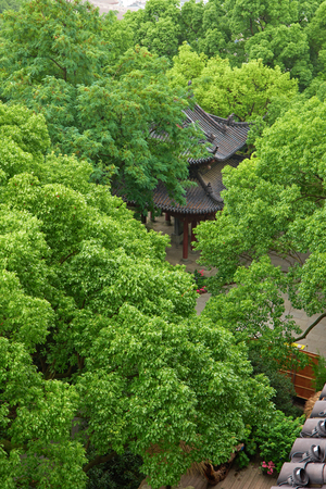 Aerial landscape view of a traditional pavilion in a park