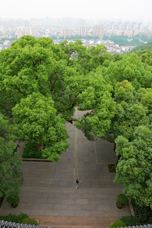 Aerial landscape view of a park Stock Photo