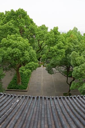 Aerial landscape view of a park 免版税图像