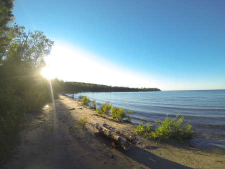 cove: Sun shining through on a forested, sandy cove Stock Photo