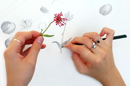 permanent: Training for a flower drawing