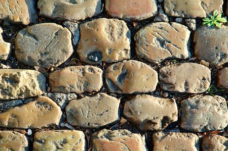 interstice: Detail of a sunny cobbled road in autumn