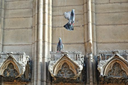 Front of St Jean cathedral. (Lyon, France) photo
