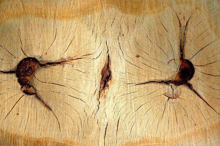 the scars: Twin wood Stock Photo