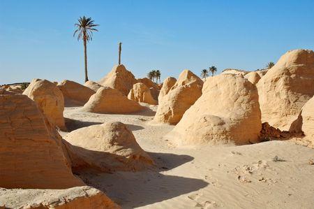 South Tunisia photo