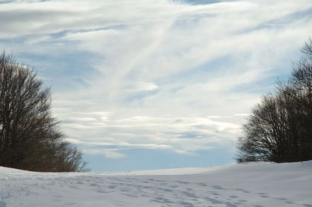 sledging people: Snowshoes trekking in french Jura. Stock Photo