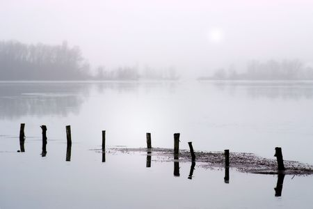 wavelet: Wooden post in a lake with tree reflection Stock Photo