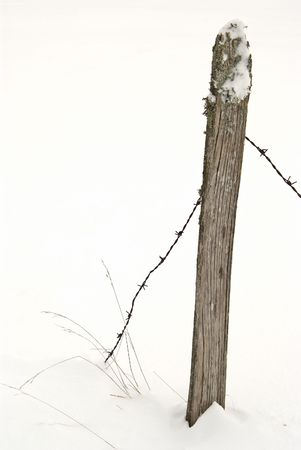 Frozen post, barbed wire and twigs against white snowy background photo