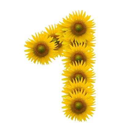 1, Sun flower alphabet isolated on white