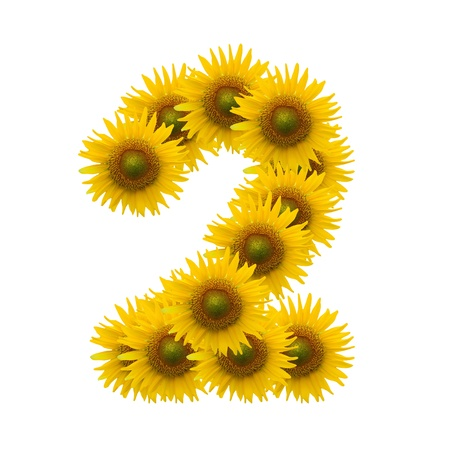 2,Sun flower alphabet isolated on white photo
