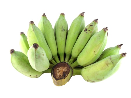 Fresh cultivated banana, raw banana    photo