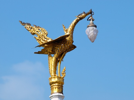 Golden swan lamp on electricity photo