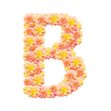 B,flower alphabet isolated on white photo
