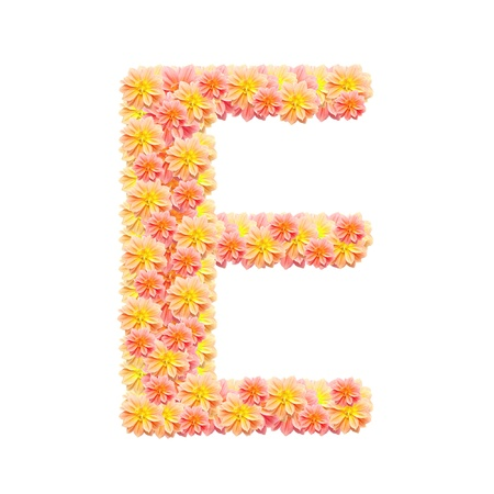 E,flower alphabet isolated on white photo