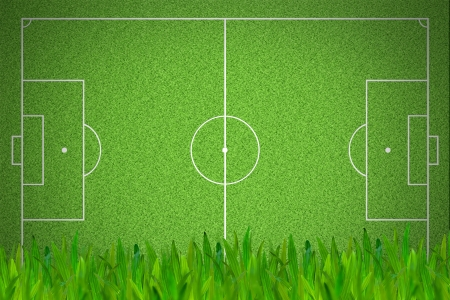 Soccer or football field with green grass foreground