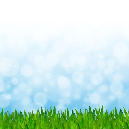 Abstract blue tone bokeh background with green grass. photo