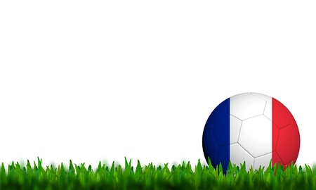 3D Football France Flag Patter in green grass on white background photo