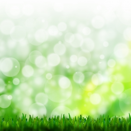natural green background with selective focus Stock Photo - 14135884