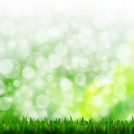 natuurlijke groene achtergrond met selectieve focus