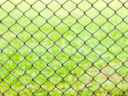 iron wire fence on green grass background . Stock Photo - 14187265