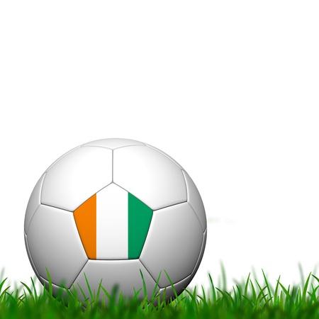 3D Soccer ball  te dIvoire Flag Patter on green grass over white background photo