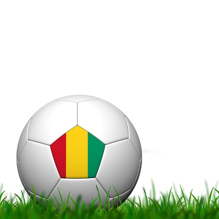 3D Soccer balll Guinea Flag Patter on green grass over white background photo