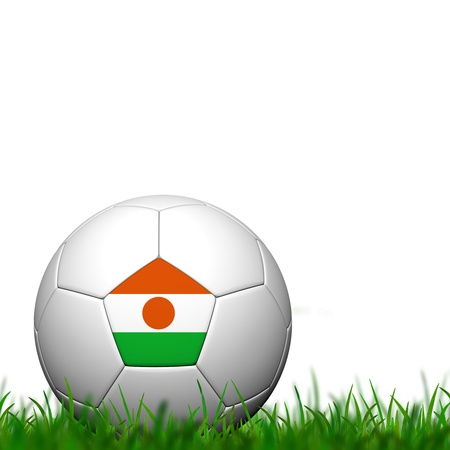 3D Soccer balll Niger Flag Patter on green grass over white background photo