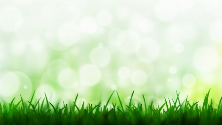 Natural green background with bokeh background photo