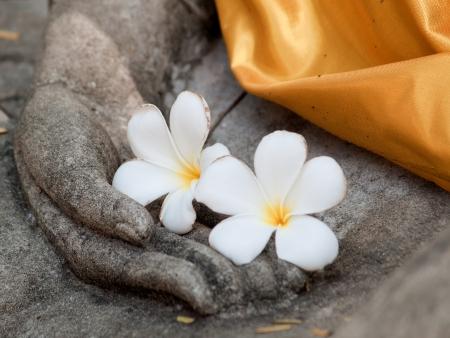 plumeria bloem op oude hand van boeddhabeeld Stockfoto