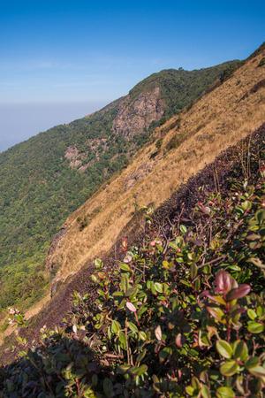 Viewpoint at Kew mae pan nature trail, Doi Inthanon national park, ChiangMai, Thailand photo