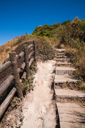 Walkway in Alpine savanna grassland of Doi Inthanon, Chiang Mai, Thailand photo