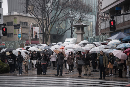 Harajuku: TOKYO - March 01,2015 : People walk toward Yoyogi park near Harajuku train station on March 01,2015. Harajuku is known as a center of Japanese youth culture and fashion. Editorial