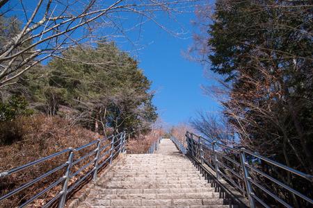 chureito: Gate to Chureito Pagoda in Winter, Fujiyoshida, Japan