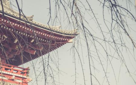 asakusa: Traditional Japanese Architecture, Sensoji Temple, Asakusa; Tokyo, Japan (Photo Filter) Stock Photo