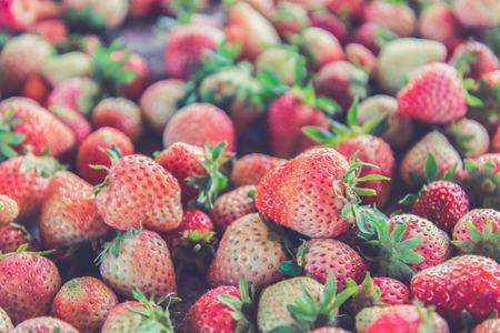 strawberrys: Fresh Strawberrys at Doi ang-Khang (Vintage filter effect used) Stock Photo