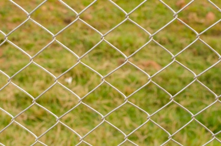 meshed: Wire Mesh Fence Close-Up on Green Background