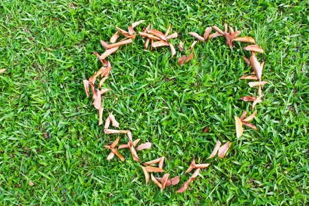 plastic heart: Lawn and clean look