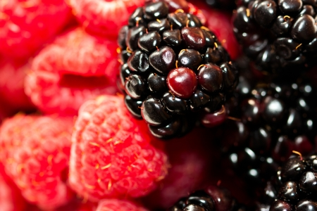 dominant color: raspberry and blackberry