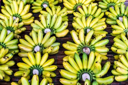 unblemished: Pisang Mas banana or Musa  AA group   Kluai Khai  banana in Thailand