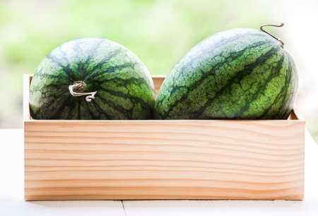 Fresh watermelons in a wooden box and placed on a white wooden table
