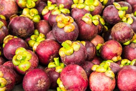 Mangosteen fruits Stock Photo - 14462495
