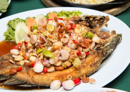Striped snakehead fish with Spices on the plate photo
