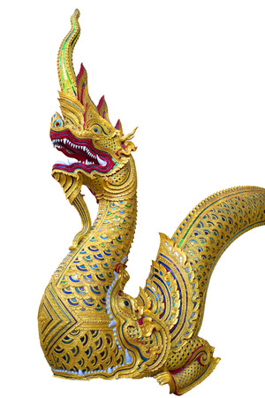 naga china: Golden king of Naga in white background ,Art by the faith of Buddhism
