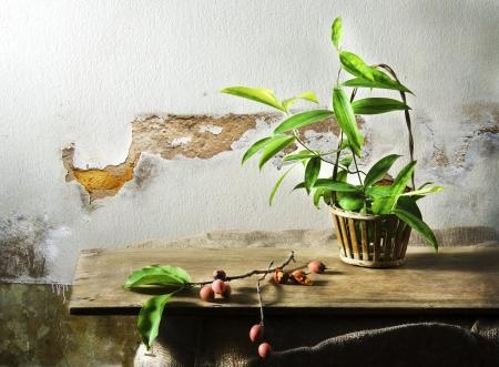 art nature morte avec fruits et d'ornement dans le panier sur la table en bois