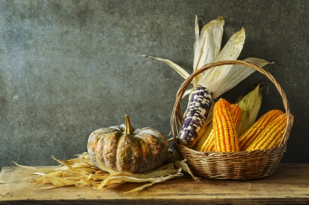 Still Life With pumpkin and corn in harvest